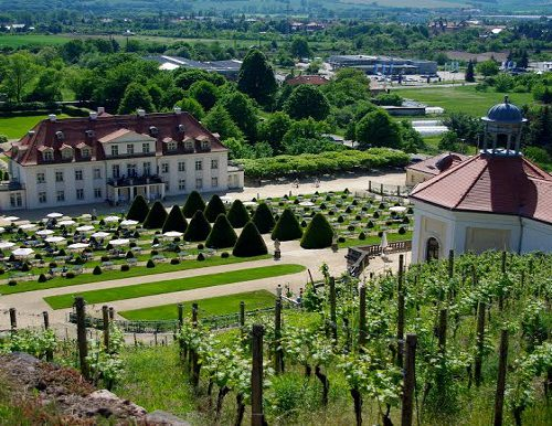Schloss_Wackerbarth1